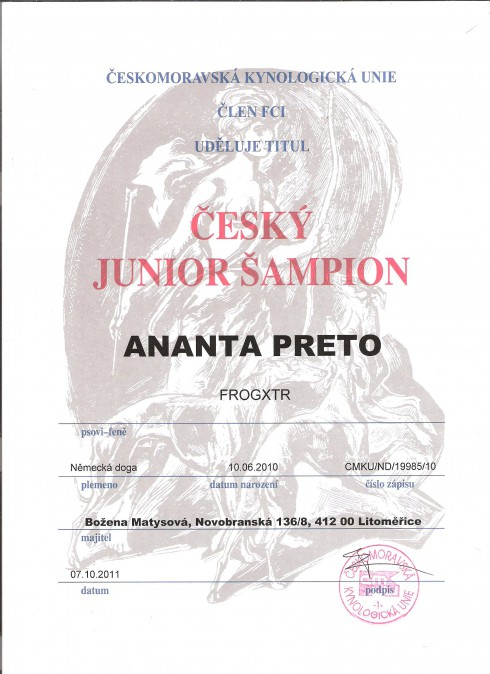 juniorsampion-anynky-001.jpg